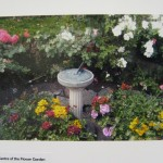 Jackie Jones: The Centre of the Flower Garden
